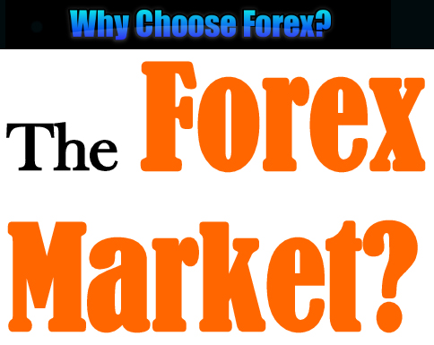 Forex traders on facebook